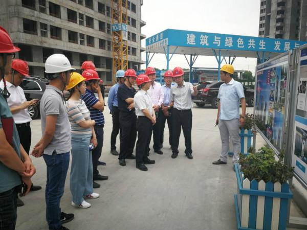 许继金局长一2020行调研江北新区中央商务区基础设施建设